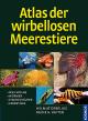 Atlas der wirbellosen Meerestiere